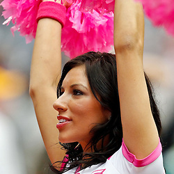 October 10, 2010; Houston, TX USA; A Houston Texans cheerleader performs during the second half of a game between the Houston Texans and the New York Giants at Reliant Stadium. The Giants defeated the Texans 34-10. Mandatory Credit: Derick E. Hingle