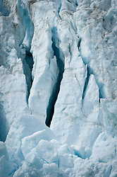 The face of Margerie Glacier, one of the seven tidewater glaciers in Glacier Bay National Park and Reserve in southeast Alaska, is riddled with cracks and crevices. The Margerie Glacier is located on the Tarr Inlet next to another tidewater glacier, Grand Pacific Glacier. Margerie Glacier's face has a total height of 350 feet, out of which 250 feet is above the water level and 100 feet is beneath the water surface. For comparison purposes the Statue of Liberty is 307 feet tall.. The Margerie Glacier is located on the Tarr Inlet next to another tidewater glacier, Grand Pacific Glacier. Margerie Glacier's one mile wide glacial face has a total height of 350 feet, out of which 250 feet is above the water level and 100 feet is beneath the water surface. For comparison purposes the Statue of Liberty is 307 feet tall. The length of the glacier (2011) is approximately 21 miles.