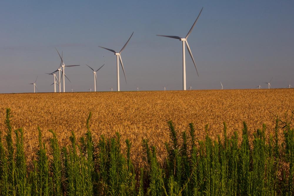 Wind farm turbines in a rural Texas field at dusk.