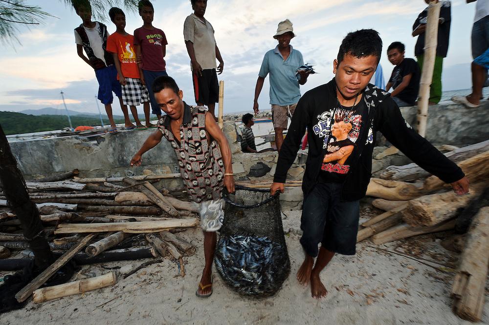 Fishermen with a catch of Roa fish, Bangga, Gorontalo, Sulawesi, Indonesia.