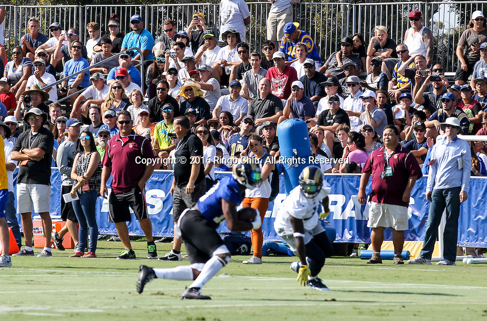 Fans in Los Angeles Rams training session at UC Irvine campus.<br /> (Photo by Ringo Chiu/PHOTOFORMULA.com)<br /> <br /> Usage Notes: This content is intended for editorial use only. For other uses, additional clearances may be required.