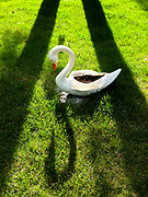 Swan lawn ornament at mobile home