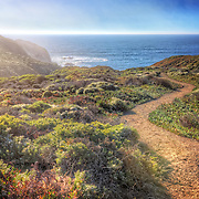 Surrounded by ice plants, this long winding path leads to South Rodeo Beach in the Marin Headlands. Photo by Jennifer Rondinelli Reilly.