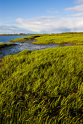 The salt marsh side of Long Beach in Stratford, Connecticut.  This body of water is known as Lewis Gut and is adjacent to the Great Meadows Unit of McKinney National Wildlife Refuge.