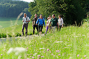 geführte Gruppenwanderung mit Ranger bei Wald-Michelbach, Odenwald, Hessen, Deutschland | guided walking tour with Ranger in Wald-Michelbach, Odenwald, Hesse, Germany