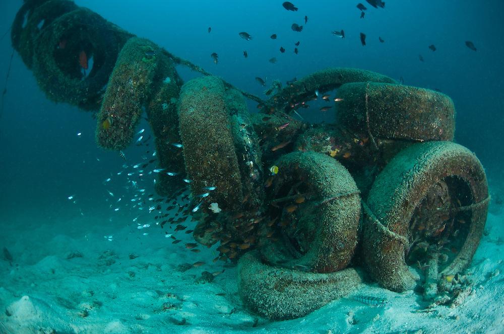 Artificial reef made from old car tyres, Kapalai, Sabah, Malaysia.