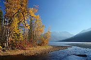Fall colors at Kintla Lake and Kintla Creek outlet. Glacier National Park, northwest Montana.