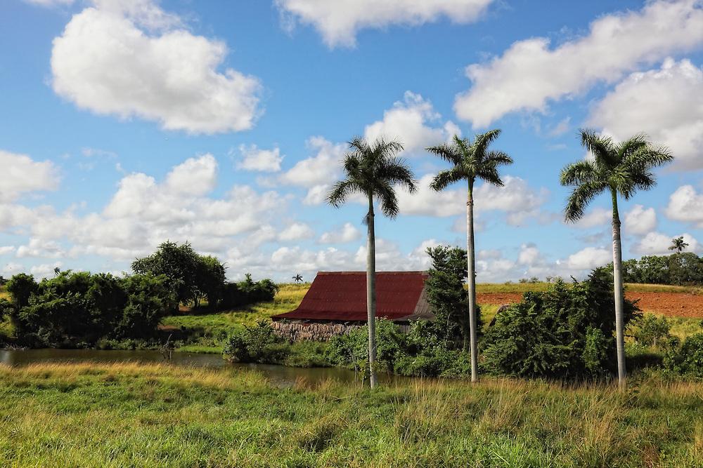 Farm in Capitan Tomas, Pinar del Rio, Cuba.