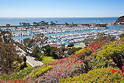 Dana Point View From Bluff Top