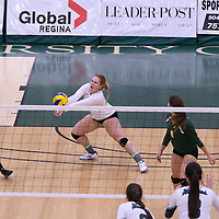3rd year libero Taylor Ungar (13) of the Regina Cougars in action during Women's Volleyball home game on November 19 at Centre for Kinesiology, Health and Sport. Credit: Arthur Ward/Arthur Images