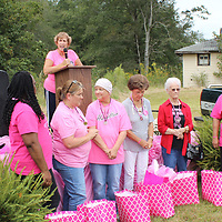 RAY VAN DUSEN/BUY AT PHOTOS.MONROECOUNTYJOURNAL.COM<br /> Jean Robinson recognizes breast cancer survivors Oct. 7 during Hamilton's annual event spreading awareness of the disease. Front row, from left, Jacob Smith stands in for his wife, Myra; Jametta Keaton; Sharon Logan; Karen Rye; Betty Robinson; Marie McLemore; Glenda Keaton; and Danielle Stephan.