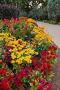 20140906 AAS Garden