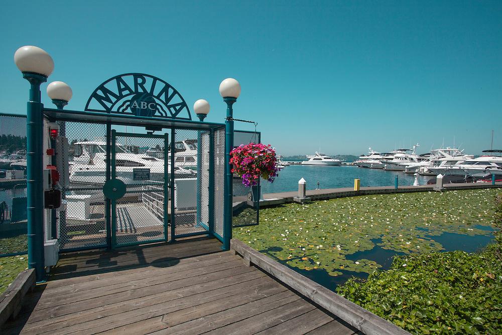 North America, United States, Washington, Kirkland, Carillon Point Marina