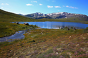 Ramsjøhytta, is a mountain cabin owned by the national organization for hikers in Norway (DNT). It is located south of the Skarvene Roltdal national park in Mid-Norway, and is part of a hiking trail in the mountains Sylene, on the border to Sweden.