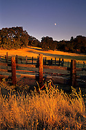 Moonrise at sunset near Twisted Oak Vineyards, Murphys, Calaveras County, California