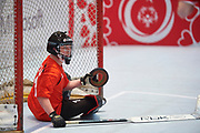 Graz, Austria - 2017 March 17: SO Austria compete with SO Bharat (India) in Floor Hockey while Special Olympics World Winter Games Austria 2017 at Messe Graz on March 17, 2017 in Graz, Austria.<br /> <br /> Mandatory credit:<br /> Photo by &copy; Adam Nurkiewicz / Mediasport<br /> <br /> Adam Nurkiewicz declares that he has no rights to the image of people at the photographs of his authorship.<br /> <br /> Picture also available in RAW (NEF) or TIFF format on special request.<br /> <br /> Any editorial, commercial or promotional use requires written permission from the author of image.<br /> <br /> Image can be used in the press when the method of use and the signature does not hurt people on the picture.