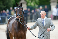 Peternell Alexander, (RSA), Asih<br /> First Horse Inspection - Mitsubishi Motors Badminton Horse Trials <br /> Badminton 2015