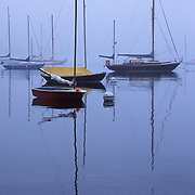 Sailboats in Castine, Maine