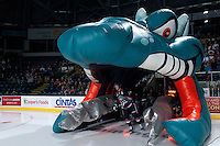 KELOWNA, CANADA - SEPTEMBER 28:  Damon Severson #7 of the Kelowna Rockets enters the ice against the Victoria Royals  at the Kelowna Rockets on September 28, 2013 at Prospera Place in Kelowna, British Columbia, Canada (Photo by Marissa Baecker/Shoot the Breeze) *** Local Caption ***