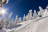 Pete Costain skiing untracked powder at Whitefish Mountain Resort in Montana