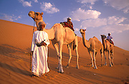 Beduin Family on Camels, Sand Dunes, Wahiba Sands, near Al Qabil, Oman, Arabian Peninsula