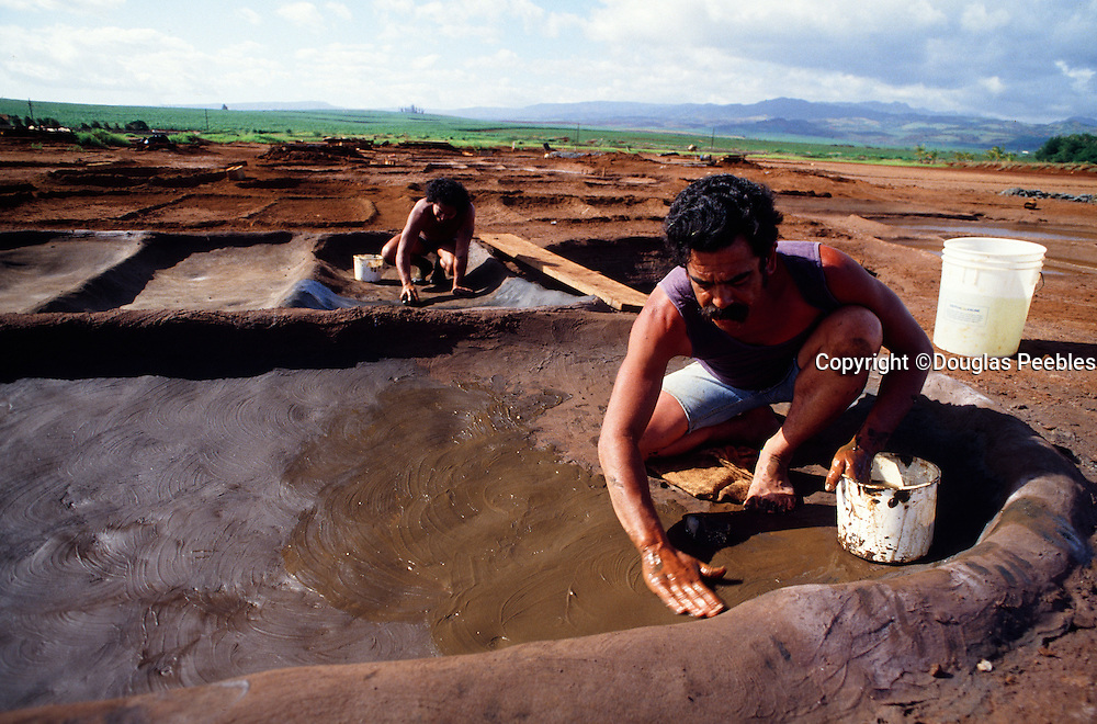 Hanapepe Hawaiian salt, Kauai, Hawaii