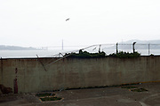 Fence to Freedom, Alcatraz, San Francisco, California, 2012
