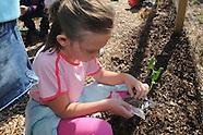 bes-community garden