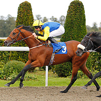 Ruscello and George Baker winning the 4.50 race