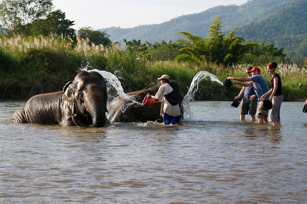 "Tourists and volunteers give the elephants a bath at the Elephant Nature Park near Chiang Mai, Thailand.  Sangduen ""Lek"" Chailert founded the park as a sanctuary and rescue centre for elephants.  The park currently has 32 elephants sponsored and supported by volunteers from all over the world."
