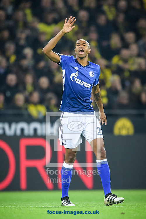 Naldo of FC Schalke 04 during the Bundesliga match at Signal Iduna Park, Dortmund<br /> Picture by EXPA Pictures/Focus Images Ltd 07814482222<br /> 29/10/2016<br /> *** UK &amp; IRELAND ONLY ***<br /> EXPA-EIB-161030-0027.jpg
