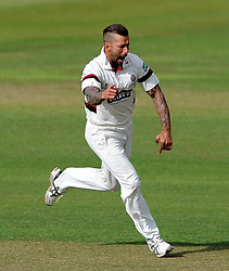 Somerset's Peter Trego celebrates the wicket of Sussex's Luke Wells. - Photo mandatory by-line: Harry Trump/JMP - Mobile: 07966 386802 - 05/07/15 - SPORT - CRICKET - LVCC - County Championship Division One - Somerset v Sussex- The County Ground, Taunton, England.