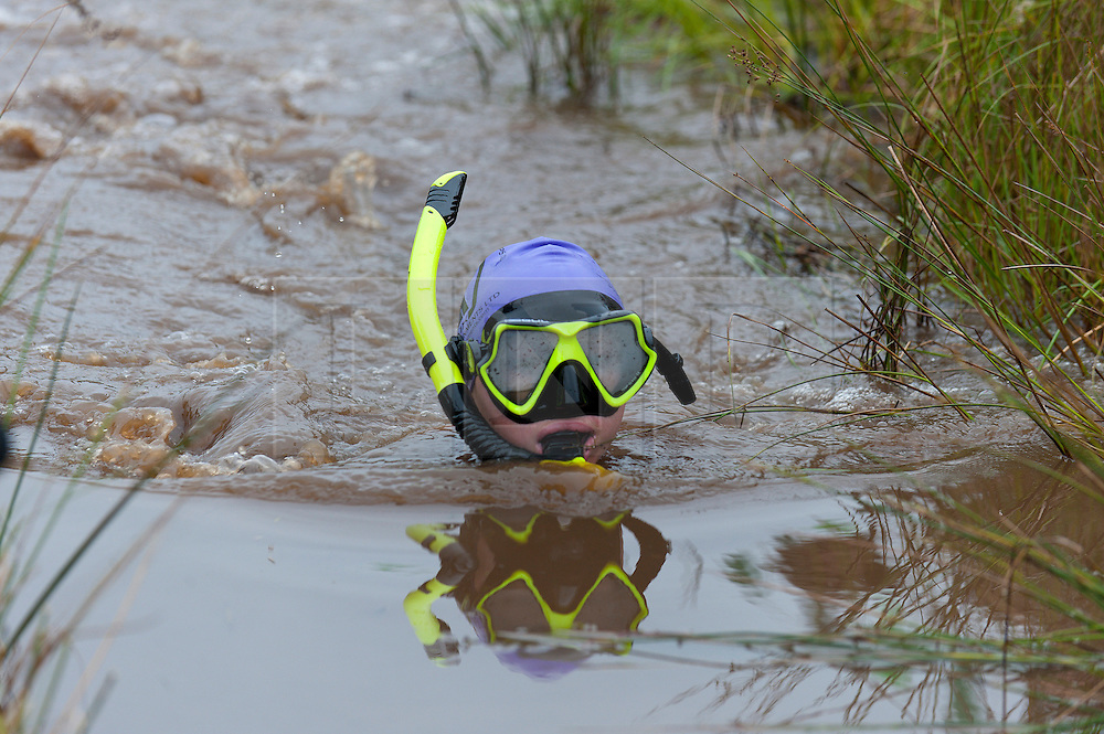 © Licensed to London News Pictures. 30/08/2015. Llanwrtyd Wells, Powys, Wales, UK. World Bogsnorkelling Championships, conceived 30 years ago in a Welsh pub by landlord Gordon Green, are held every August Bank Holiday at Waen Rhydd Bog. Using unconventional swimming strokes, participants swim two lengths of a 55 metre trench cut through a peat bog wearing snorkel and flippers. The world record was broken in 2014 by 33 year old Kirsty Johnson from Lightwater, Surrey, in a time of 1 min 22.56 secs. Photo credit: Graham M. Lawrence/LNP