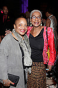 January 30, 2017-New York, New York-United States: (L-R) Dr. Deb Willis, Chair/Curator, Photography Dept., NYU and Lafleur Paysour, Smithsonian African American Museum of History & Culture attend the National Cares Mentoring Movement 'For the Love of Our Children Gala' held at Cipriani 42nd Street on January 30, 2017 in New York City. The National CARES Mentoring Movement seeks to dispel that notion by providing young people with role models who will play an active role in helping to shape their development.(Terrence Jennings/terrencejennings.com)