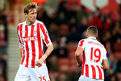 Stoke City's Peter Crouch and Jonathan Walters - Mandatory by-line: Matt McNulty/JMP - 03/01/2017 - FOOTBALL - Bet365 Stadium - Stoke-on-Trent, England - Stoke City v Watford - Premier League