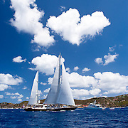 Avalon racing in the St. Barth's Bucket Regatta.