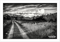 An afternoon drive in the Inverell district after summer rain - monochrome version [Inverell, New South Wales]<br />