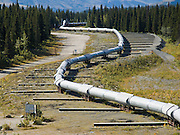 "The Trans Alaska Pipeline (or Alyeska Pipeline) crosses the Alaska Range and conveys crude oil 800 miles (1287 km) from Prudhoe Bay to Valdez, Alaska, USA. The Pipeline snakes above ground in ""S"" shapes to enable expansion and contraction as weather varies. Horizontal slip-bars allow for sliding in a severe earthquake. The 48-inch diameter (122 cm) pipeline is privately owned by the Alyeska Pipeline Service Company. The Trans Alaska Pipeline System (TAPS) includes The Pipeline, several hundred miles of feeder pipelines, 11 pump stations, and the Valdez Marine Terminal. Environmental, legal, and political debates followed the discovery of oil at Prudhoe Bay in 1968. After the 1973 oil crisis caused a sharp rise in oil prices in the United States and made exploration of the Prudhoe Bay oil field economically feasible, legislation removed legal challenges and the pipeline was built 1974-1977. Extreme cold, permafrost, and difficult terrain challenged builders. Tens of thousands of workers flocked to Alaska, causing a boomtown atmosphere in Valdez, Fairbanks, and Anchorage. Oil began flowing in 1977. The pipeline delivered the oil spilled by the huge 1989 Exxon Valdez oil tanker disaster, which caused environmental damage expected to last 20-30 years in Prince William Sound."