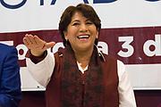 La noche del 3 de marzo de 2017, Delfina Gómez fue electa candidata a gobernadora del Estado de México del partido MORENA, luego de la declinación de América Rivera, quien también contendía por la candidatura.