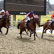 Lingfield 9th March