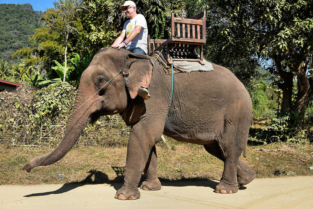 Man Riding Asian Elephant in Ban Pak Ou, Laos<br /> Ban Pak Ou is a small village along the Mekong River in Laos. Very few visitors to this part of Southeast Asia can resist the opportunity to ride on the back of an Asian elephant like this one at the Nam Ou Elephant Farm.