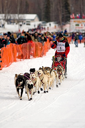 05 March 2006: Willow, Alaska - 4 time champion, Doug Swingley of Lincoln, MT during the restart of the 2006 Iditarod on Willow Lake in Willow, Alaska