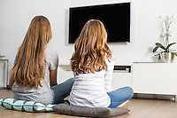 Rear view of siblings watching TV at home