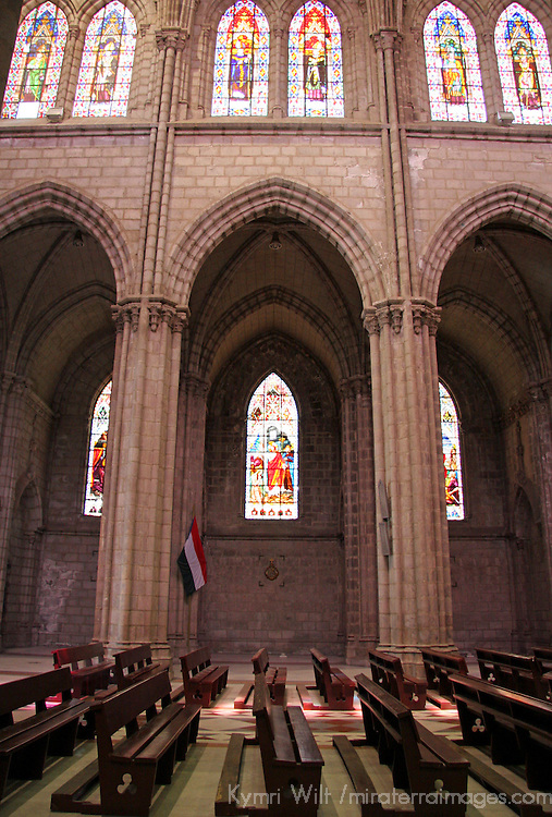 Americas, South America, Ecuador, Quito. Interior nave of the Basilica del Voto Nacional - construction began in 1892 and is still underway.