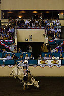 Tony Mendes rides Gambler in the Short Go Round during the PBR rodeo at the Del Mar Fairgrounds in Del Mar, California on July 26th, 2008.  As the only rider to go eight seconds in both rides, he became Saturday night's champion.