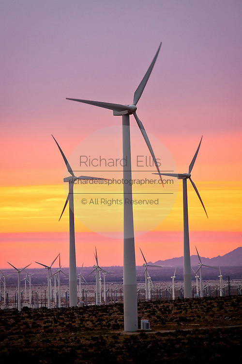 Sunset over wind turbines at the San Gorgonio Pass Wind Farm outside Palm Springs, CA.