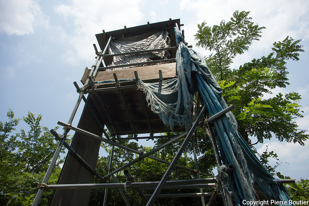 July 9,2017_Tokyo,Chiba surveillance tower of  farmers and revolutionnary leagues fighting against the expropriation of their land by Narita airport company who want to expand the land of airport . 50 years after the first actions of resistance, and a long  struggle where there were more than 6500 wounded and 3300 arrests and two deaths in confrontations with the police anti Riots, groups from the new left, such as the Zengakuren, the farmers' league, the communist league, anarchist groups are gathering on the plots of Sir Takao Ito who continues to fight against his expropriation. Pierre Boutier,