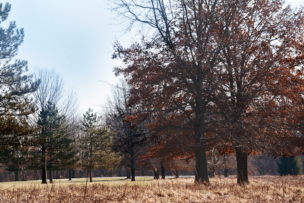 Sharon Woods Metro Park near Columbus, Ohio