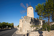 Sineu. Traditional windmill.