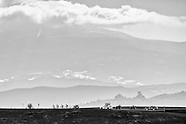 Strade Bianche 2013